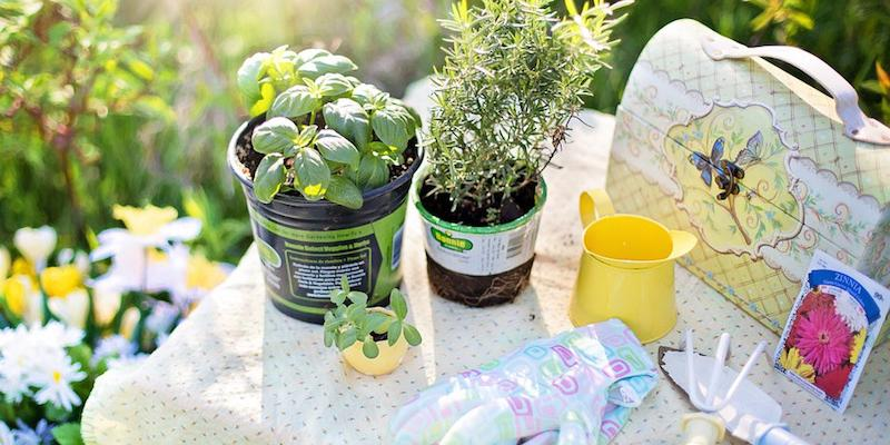 Perfect gifts for Gardeners