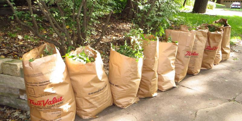 Properly Disposing of Yard Waste