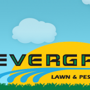 Evergreen Lawn & Pest Control logo